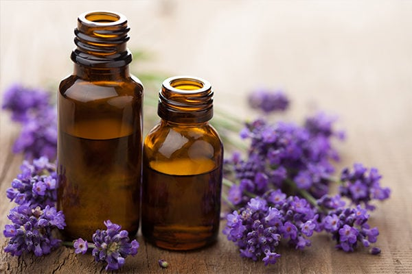 levender essential oil to fight signs of aging
