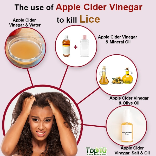 use of apple cider vinegar to kill lice