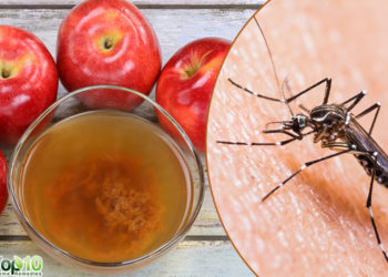 apple cider vinegar moquito bite remedies