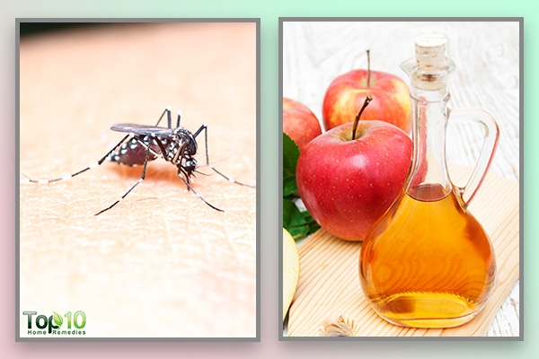 apple cider vinegar relieves itching from mosquito bites