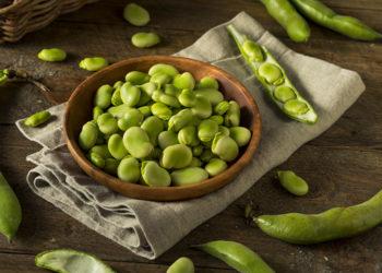 fava beans for health