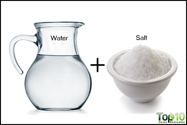 salt and water weed killer recipe