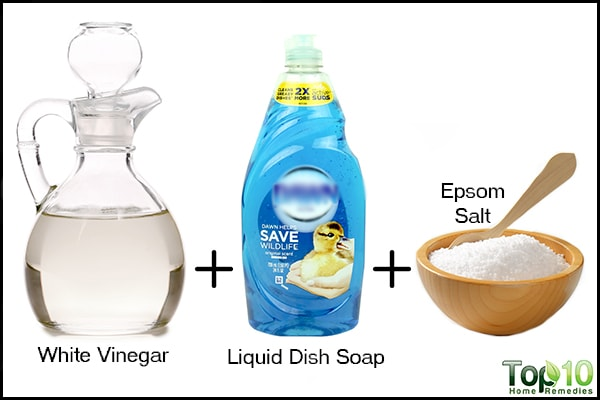 homemade white vinegar and dish soap weed killer
