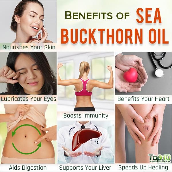 sea buckthorn oil health benefits